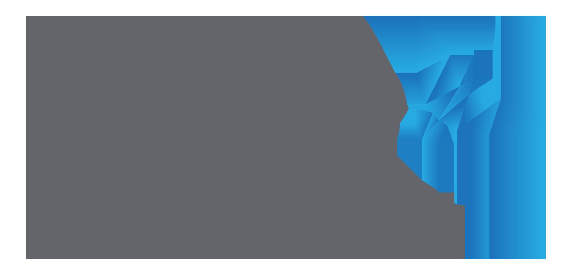 logo_nviso-with-bird