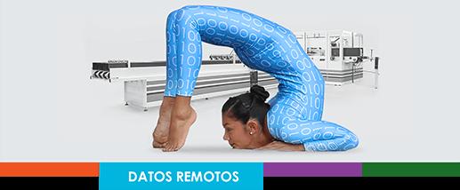 Remote D ES