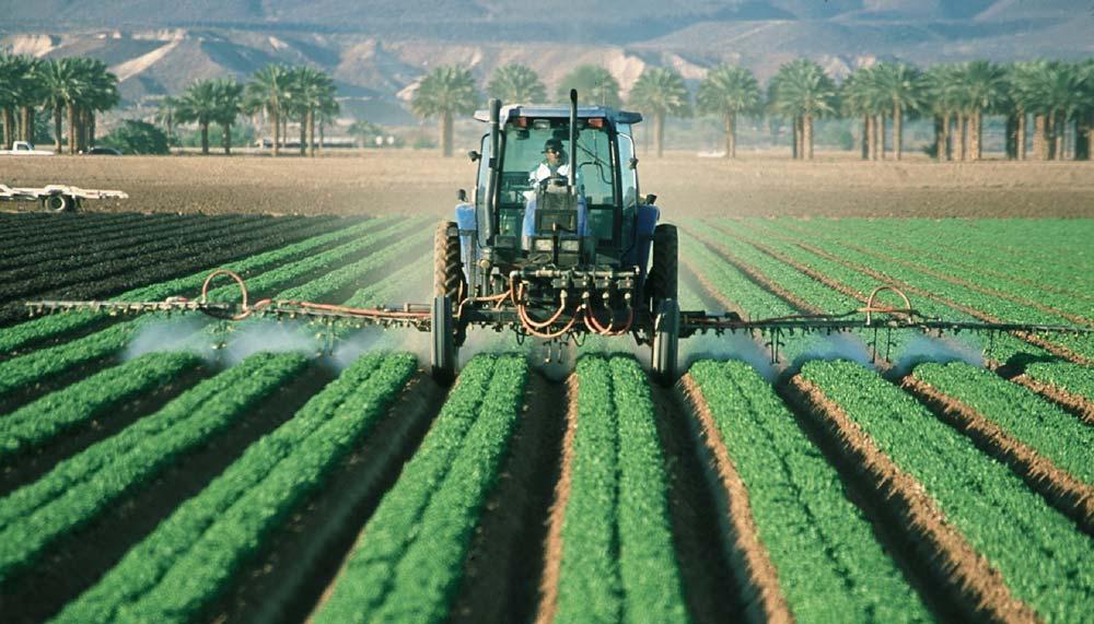 farmer-crop