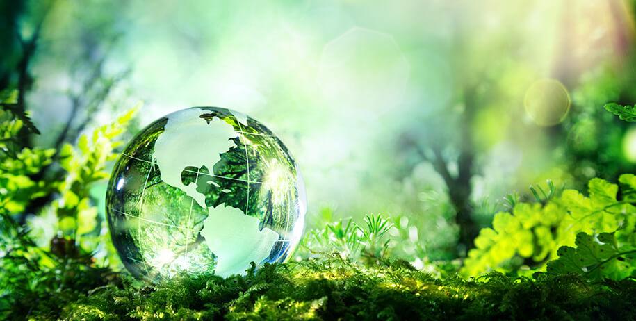 hms-sustainability