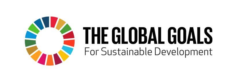 The-global-goals-UN